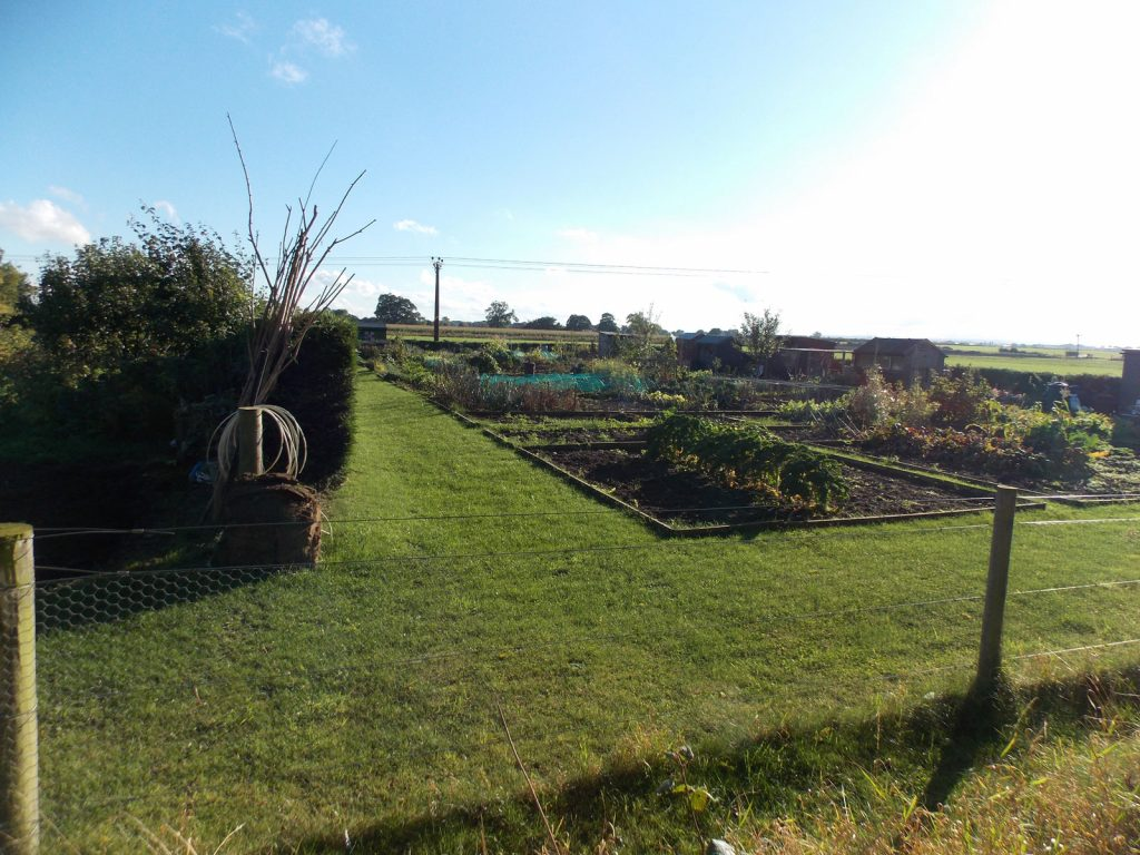 allotment-extension